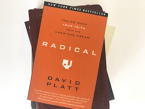 Radical Book by David Platt